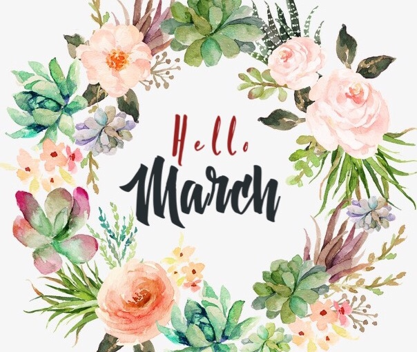 Hello March! Let's talk about February!